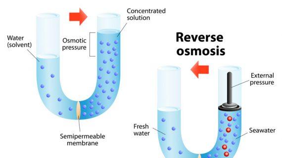 osmiosis