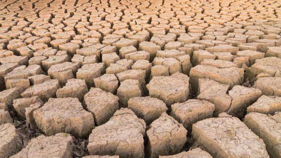 global-drought