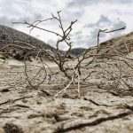 Drought and desertification: new challenges for the northern Mediterranean basin